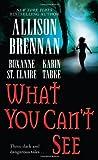 What You Can't See, Allison Brennan and Karin Tabke, 1416542299