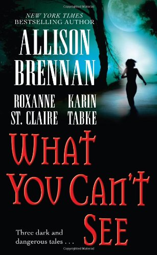 What You Can't See pdf