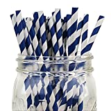 Just Artifacts Decorative Striped Paper Straws (100pcs, Striped, Navy)