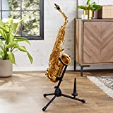 AmazonBasics Sax Stand with Flute/Clarinet Peg