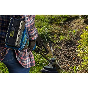 Zombi ZST5817 15-Inch 58-Volt 4Ah Lithium Cordless Electric Straight Shaft String Trimmer, Battery & Charger Included