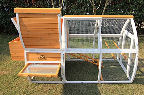 Pets Imperial Dorchester Chicken Coop Hen House Poultry Nest Box Ark Rabbit Hutch Run