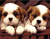 Colour Talk Diy home decor digital canvas oil painting by number kits Two Lovely Dog 16x20 inch.