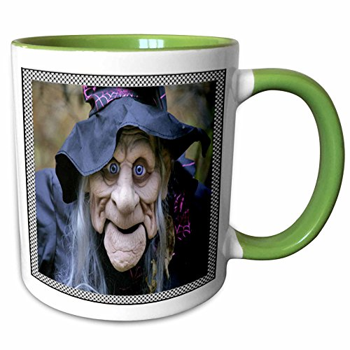 3dRose Sandy Mertens Halloween Designs - Old Lady Costume with Frame - 15oz Two-Tone Green Mug -