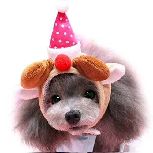 Gotd Dog Christmas Hats Cute Puppy Dog Cat Grooming Hat (Small, Hot (Small 2007 Calendar)
