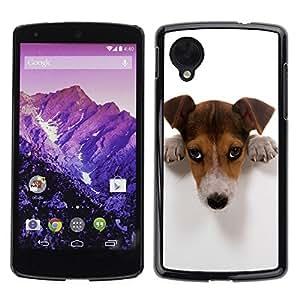 YiPhone /// Prima de resorte delgada de la cubierta del caso de Shell Armor - Cute Guilty Doge - LG Google Nexus 5 D820 D821