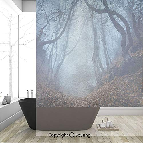 (3D Decorative Privacy Window Films,Dim Gloomy Crimea Forest with Swirling Bushes Myst Spooky Wild Woodland Photo,No-Glue Self Static Cling Glass film for Home Bedroom Bathroom Kitchen Office 36x48 Inc)