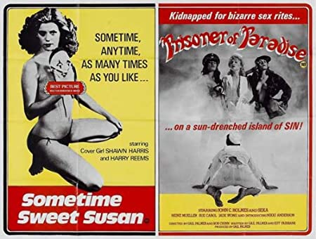 Sometime Sweet Susan 11x17 Inch 28 X 44 Cm Movie Poster Amazonco