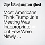 Most Americans Think Trump Jr.'s Meeting Was Inappropriate — but Few Were Newly Convinced of Collusion | Philip Bump