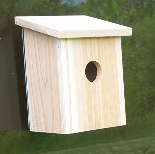 Songbird Essentials Mounted Birdhouse Observation