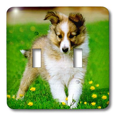 3d Rose 3dRose lsp_667_2 Sheltie Puppy - Double Toggle Sw...