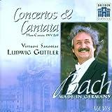 Hunt Cantata BWV 208 / Concertos