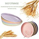 Lightweight Mini Wheat Straw Plates, OAMCEG 6 Pcs