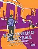 Beginning Algebra 3rd Edition