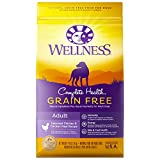 Wellness Complete Health Natural Grain Free Dry Dog Food, Chicken, 4-Pound Bag For Sale