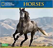 Horses National Geographic 2016 Wall Calendars