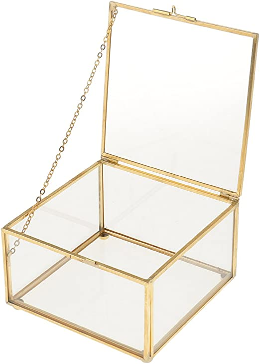 petsola Caja De Cristal Suculenta Cuadrada del Plantador De La Planta del Terrario Geométrico De Cristal Cuadrado - M, como se Describe: Amazon.es: Jardín