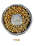 Neater Pet Brands Slow Feed Bowl Stainless Steel (4 Cup) Fits in Large Neater Feeders and Most 2 Quart Feeders
