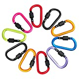 Odowalker Locking Carabiner Keychain Clip Improved Strong Screw Lock 3 Inch Aluminium Alloy D-ring Pack of 10 for Home or Outdoor Activities Camping Hiking Traveling Cycling Tent seting