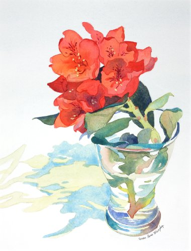 Red Rhododendron, Giclee Print of Watercolor Still Life. Picture of a Cut Rhododendron Flower in a Glass Vase, 10 X 13 Inches (Print Susan Glass)