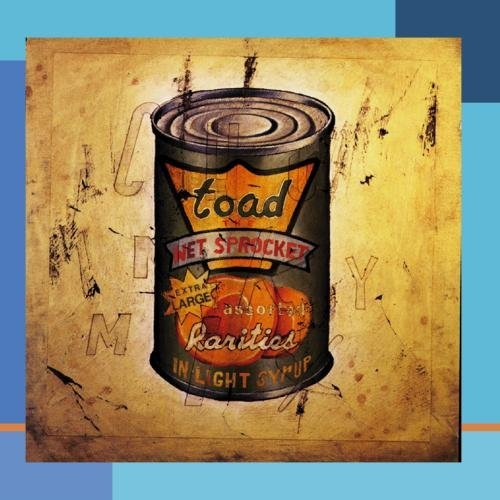 In Light Syrup by Toad The Wet Sprocket (2001-07-20)