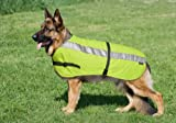 Petlife International Flecta Hi Vis Dog Jacket 24 inch
