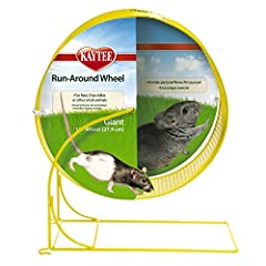 "Run-Around Wheels provide free-wheeling fun for your furry friend. The 11"" Giant Run-Around Wheel is perfectly sized for dwarf hamsters, younger hamsters, and mice. These stylish wire wheels are available in a variety of four fun colors. Each..."