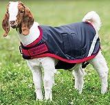 Horseware Goat Coat - Size:Large Color:Navy/Red