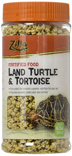 Tortoise Food Turtle - 5