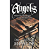 Angels Volume II: Messengers from the Metacosm