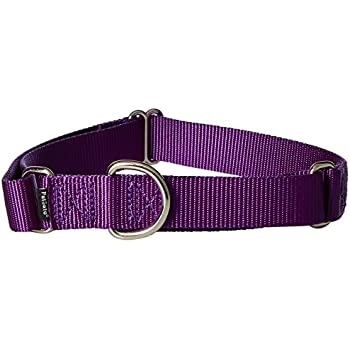 "PetSafe Martingale Collar, 1"" Large, Deep Purple"