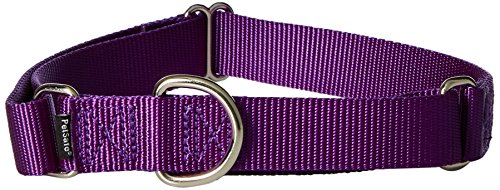 "PetSafe Martingale Collar, 1"" Large, Deep Purple"