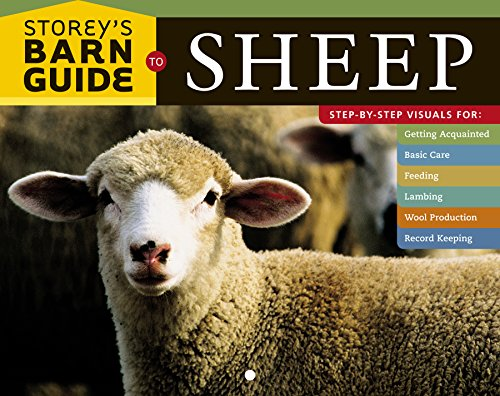 Storey's Barn Guide to Sheep - Barn Sheep