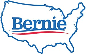 Bernie Sanders Sticker | USA America Decal | Apply to Mug Phone Laptop Water Bottle Decal Cooler Bumper | Vote Hindsight 2020 Feel The Bern Yard Sign Oval Magnet Giant Meteor Any Functioning Adult