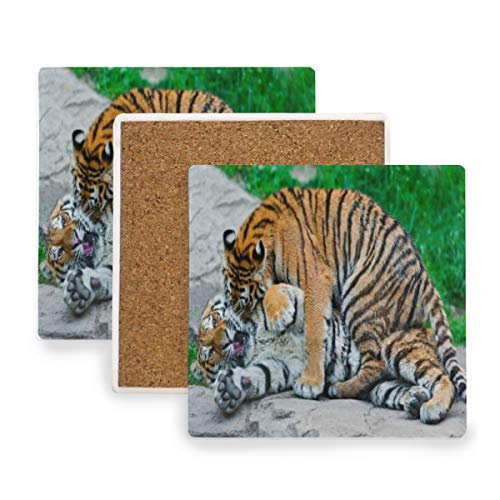 (Large Square Drink Coasters,Tigers Fun Ceramic Thirsty Stone With Cork Back Cup mats Protect Your Furniture From Spills,Scratches,Water Rings and Damage 2 pcs)