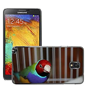 Hot Style Cell Phone PC Hard Case Cover // M00130195 Gouldian Bird Fly Wings Feather // Samsung Galaxy Note 3 III N9000 N9002 N9005