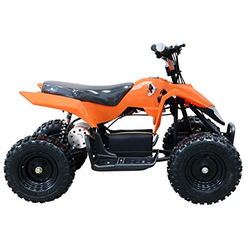 JCMOTO Electric Kids ATV 4 Four Wheelers Mini Quad | Whirly Style 24V 500W (Cheap 4 Wheelers For Adults)