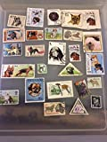 25 Dog stamps, postage stamps, worldwide topical