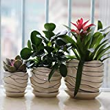 3 Pack Ceramic Flower Plant Pot, Size 4'', 6'' and 7'' (Modern)