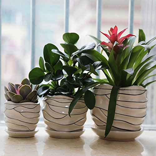 3 Pack Ceramic Flower Plant Pot, Size 4'', 6'' and 7'' (Modern) by LoveBoutique