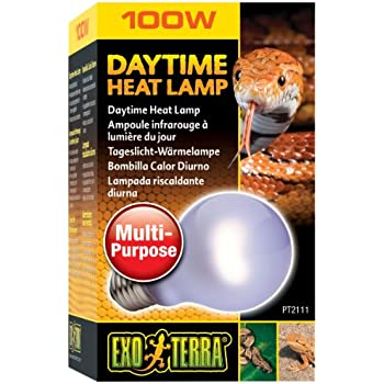 Amazon.com : Exo Terra Daytime Heat Lamp A19 / 100 Watt : Pet ...