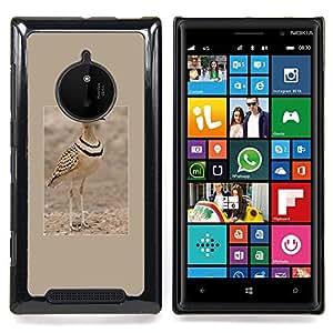 - sand summer bird poster brown nature - - Modelo de la piel protectora de la cubierta del caso FOR Nokia Lumia 830 RetroCandy