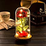Lemonbest Red Silk Rose Kit LED Light with Fallen Petals in Glass Dome on Wooden Base with USB Cable Gift for Home Decor Holiday Party Wedding Anniversary Valentine's Day