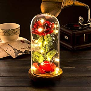 ONEVER Beauty and The Beast Rose Kit, Enchanted Red Silk Rose in Dome with LED Fairy String Lights Remote Control USB Powered for Her/Mom Wedding Anniversary Valentine Home Decor 67