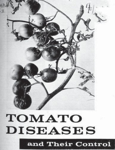 tomato-diseases-and-their-control-by-united-states-department-of-agriculture