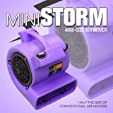 Mini Storm High Velocity Multi-Purpose Air Mover Blower Dryer Fan For Ventilation Fume Extraction Carpet & Floor Drying
