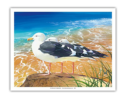 Trio Sea Gull (Pacifica Island Art Tidewater Trio - Seagulls - From an Original Color Painting by Scott Westmoreland - Fine Art Print - 11in x 14in)