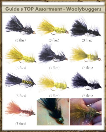 FlyDeal Fishing Flies Top Selling Flies - Guide's TOP Assortment - WOOLLY BUGGERS (32 flies)
