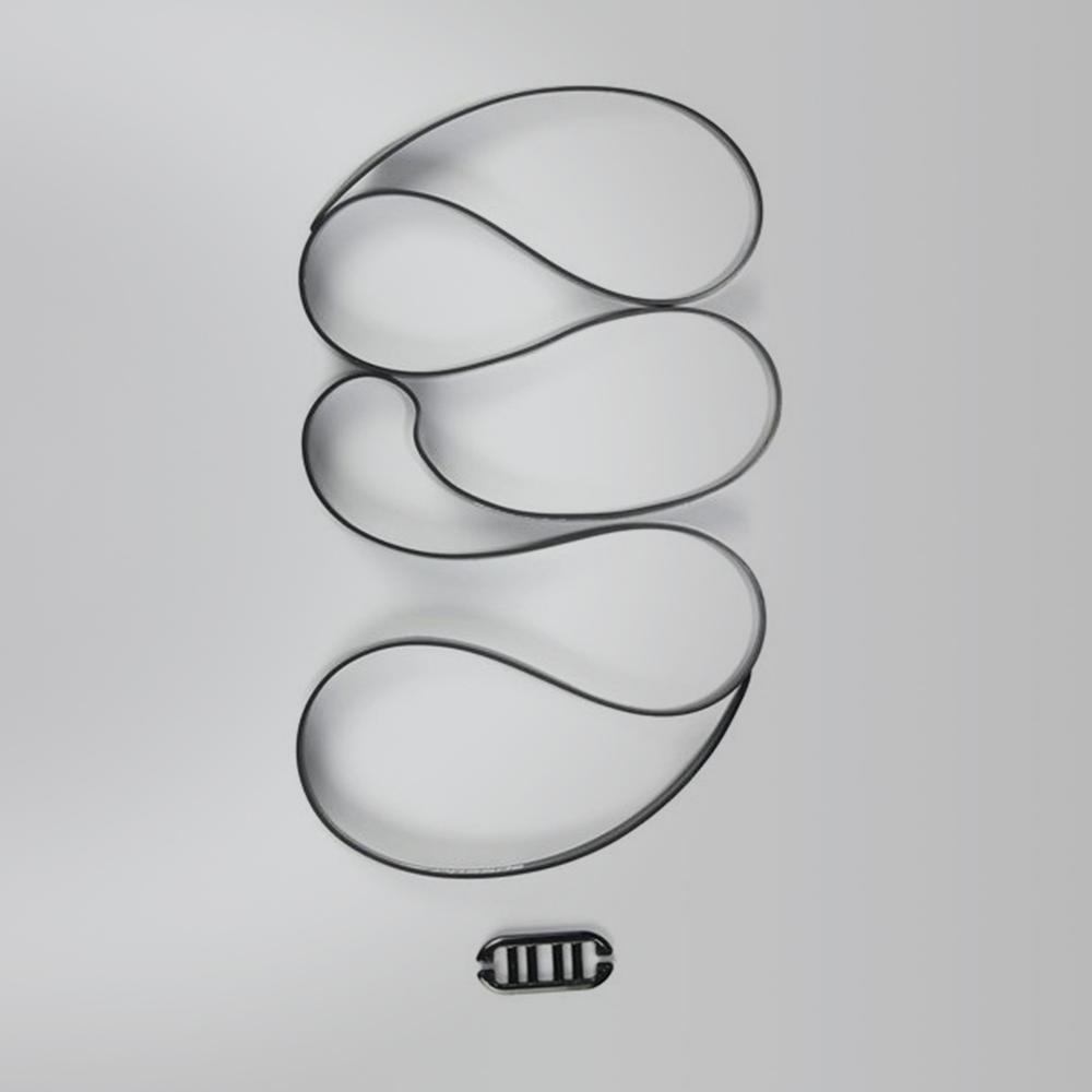 Speedo Silicone Strap /& Clip