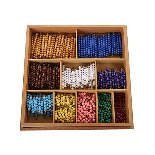 Montessori Math Materials Bead Decanomial with box for Early Preschool Learning Toy by Leader Joy Montessori USA (Image #1)
